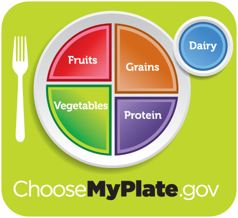 Choose my plate food pie chart
